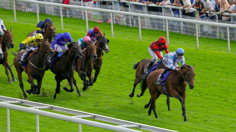 My Reward (red) finished second to Magic Circle at York last time