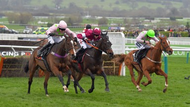 Centre in maroon with white star is APPLE'S JADE with B J Cooper 1st from next left VROUM VROUM MAG 2nd and right of winner LIMINI 3rd in OLBG Mares Hurdle at Cheltenham 14-3-17.
