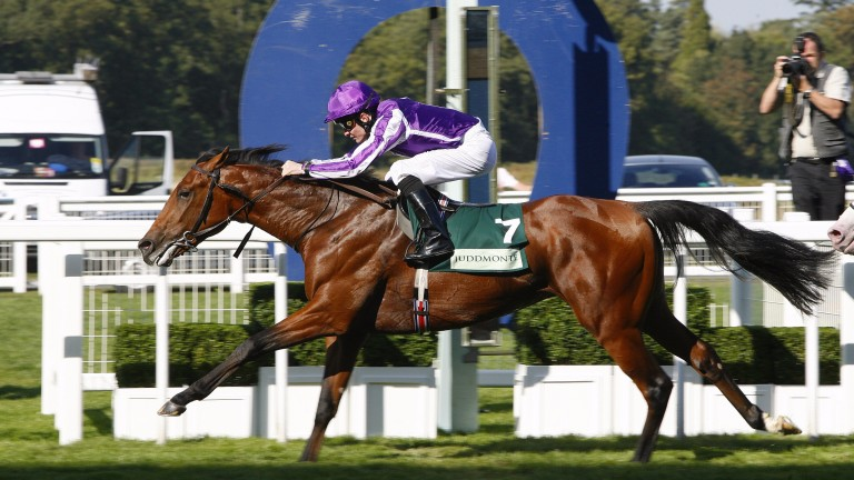 Ahead of his globetrotting days, Joshua Tree wins the Group 2 Royal Lodge Stakes at Ascot under Colm O'Donoghue