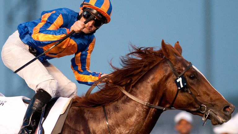 Daddy Long Legs in his racecourse pomp, winning the UAE Derby under Colm O'Donoghue