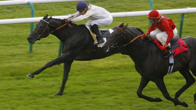 Fuisse (red): Finishing second to Le Havre in the Prix du Jockey Club