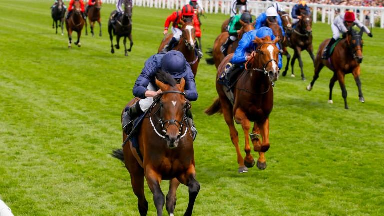Masar (right) finished third to September at Royal Ascot