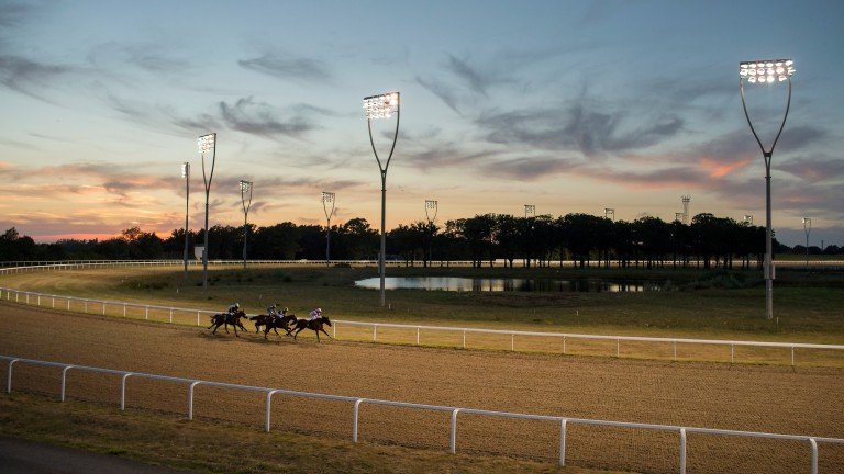 Chelmsford Asks Bha For Extra Meetings To Stage Turf