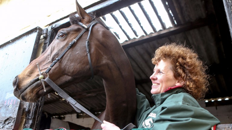 This year's Grand National hero One For Arthur, trained by Lucinda Russell, is a son of Milan