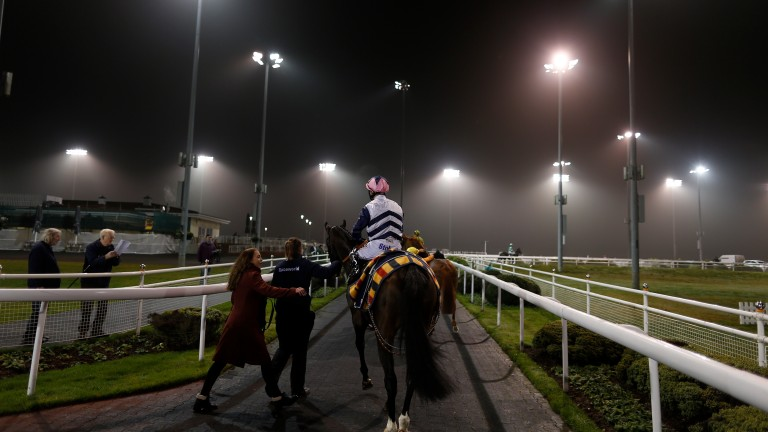 Under the lights at Chelmsford