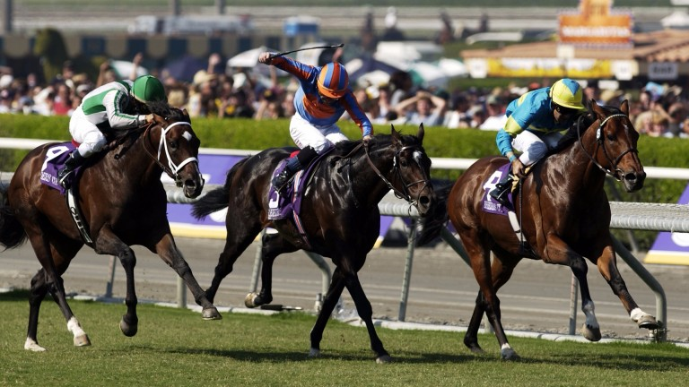 Darryll Holland finishing third on Falbrav (right) behind deadheaters High Chaparral (centre) and Johar in the 2003 Breeders' Cup Turf at Santa Anita