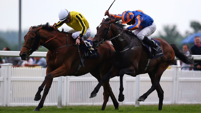 Big Orange (yellow silks) repels Order Of St George in a Gold Cup thriller