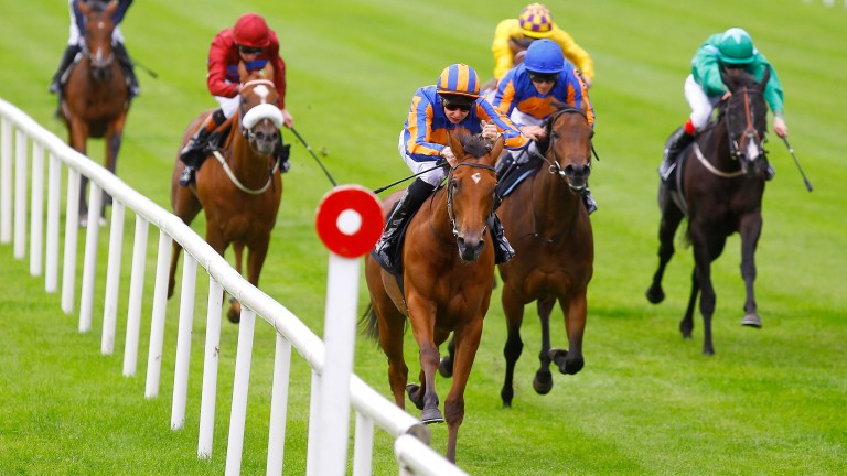 Maybe (Joseph O'Brien) wins the 2011 Moyglare Stud Stakes in style at the Curragh