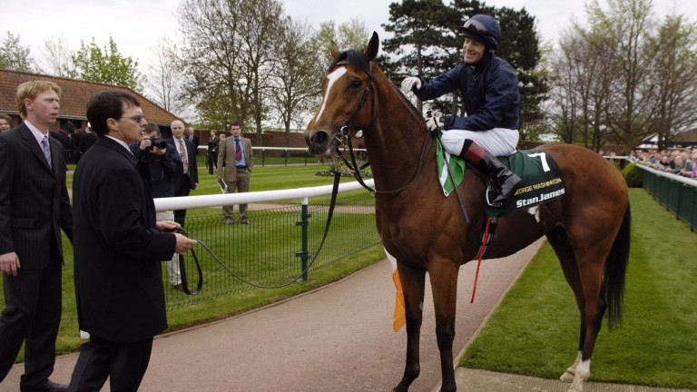 George Washington is led into the pre-parade ring after winning the 2000 Guineas at Newmarket