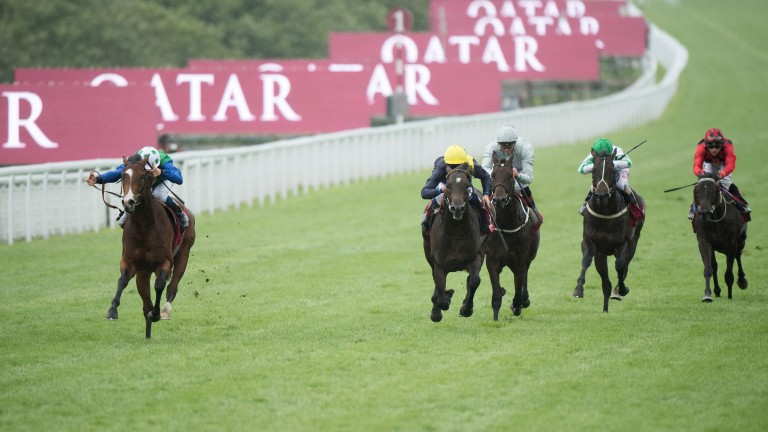 Barraquero (left) spreadeagles the field in the Group 2 Richmond Stakes at Glorious Goodwood