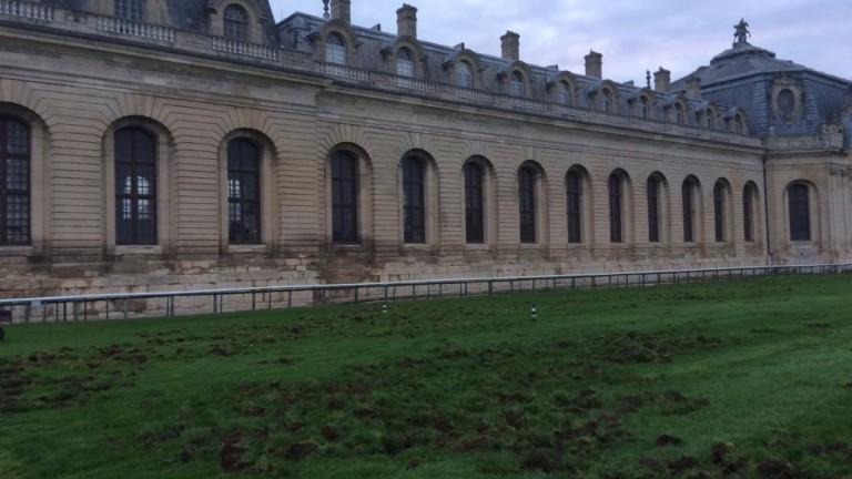 The damage caused to a section of the Chantilly track by marauding wild boar just five days before the Arc Trials card