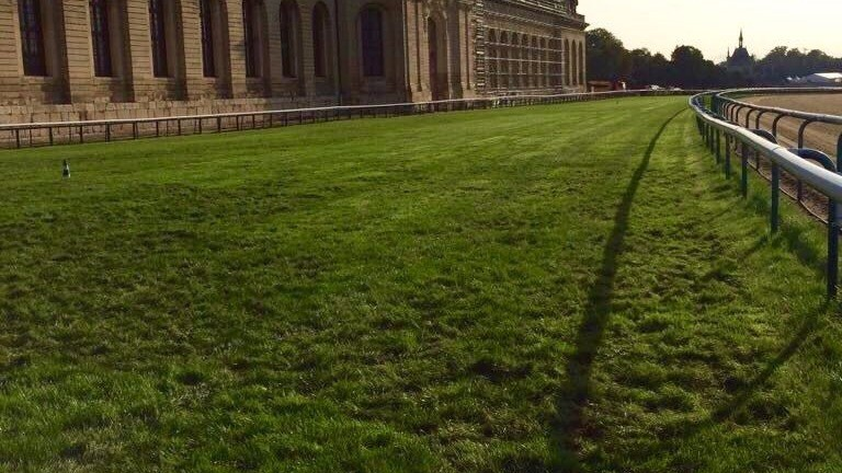 The track at Chantilly after ground crews had repaired the damage caused by wild boars