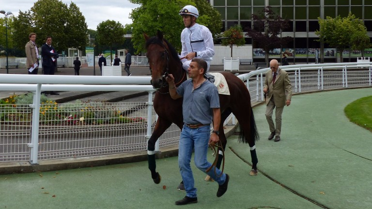 Zarak and Christophe Soumillon ahead of a racecourse gallop at Maisons-Laffitte on Tuesday. The son of Dubawi will skip Sunday's Prix Foy and head straight to the Arc on October 1