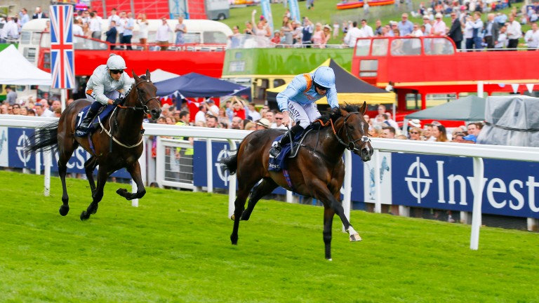 De Bruyne Horse: Listed-winning son of Showcasing is catalogued as lot 97