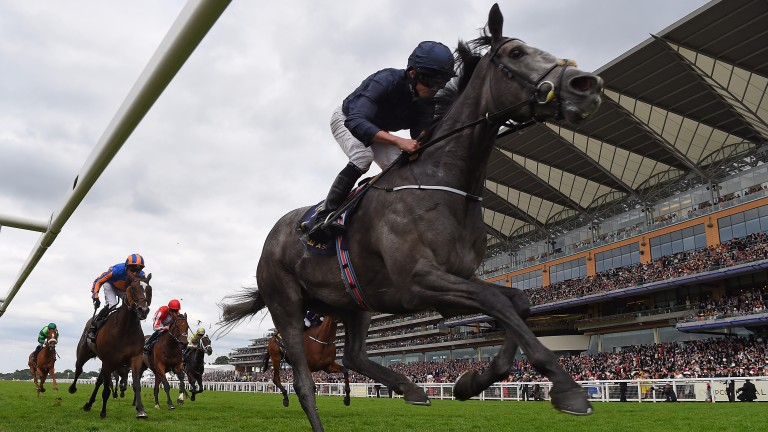 Coronation Stakes heroine Winter's second place in the Matron Stakes was enough to put her on top of the Cartier standings