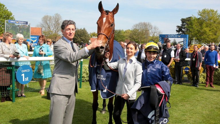 Multiple Group 1 winner Esoterique is now among 30 broodmares on the stud
