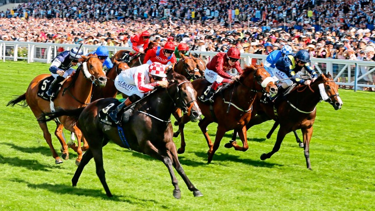 Sole Power (near) sees off another of Kyllachy's sons in Stepper Point (cheekpieces) to give the sire a one-two in the 2014 King's Stand Stakes