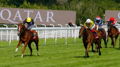 Stradivarius wins from Big Orange  (Frankie Dettori) at Goodwood.©Cranhamphoto.com