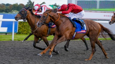 Chemical Charge gets up to beat Scarlet Dragon at Kempton