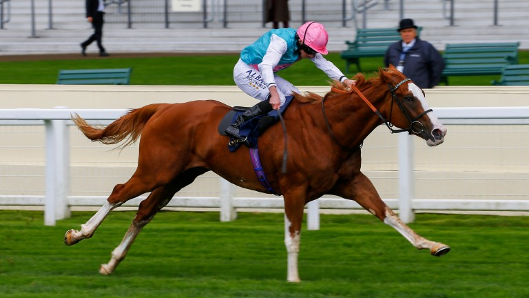 The massive Herculean stretches out well to make a winning debut