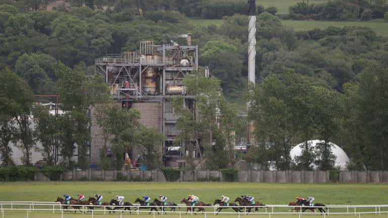 Listowel: under starters orders at 2.10