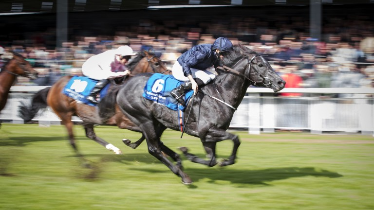 Caravaggio: passing stablemate Alphabet in front of the Curragh crowd