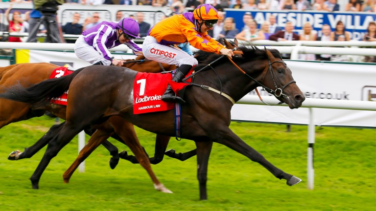 Baker lands the 2016 St Leger on Harbour Law (near side) from Ventura Storm