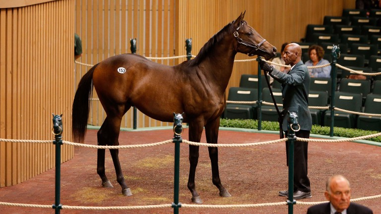 This brother to Shared Belief was led out unsold with the board showing $1.9 million