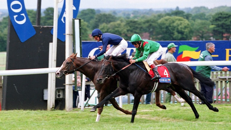 Giant's Causeway (left): fought out a finish in the 2000 Coral-Eclipse with Kalanisi