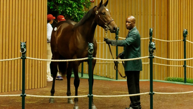 This $750,000 War Front filly ended the frustrations of Book 1 for Chris Richardson