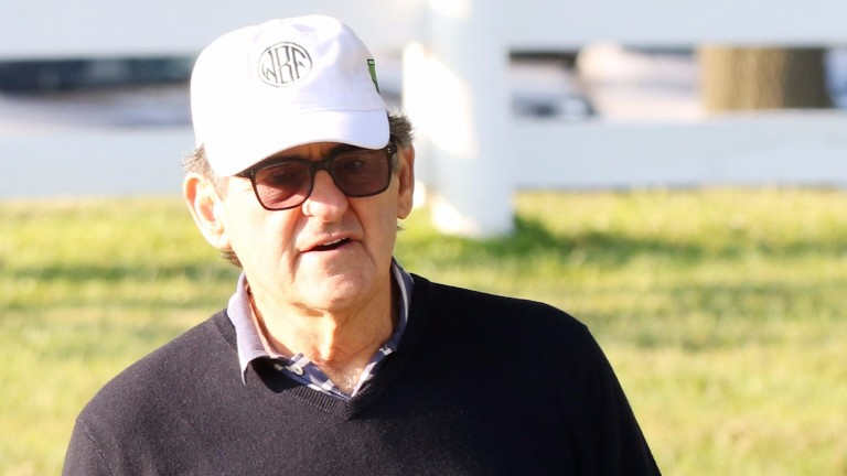Peter Brant has continued his recent investment spree at Keeneland this week