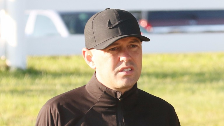 Chad Brown: trains the unbeaten Complexity