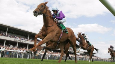 Barshiba: impressive winner of the Lancashire Oaks at Haydock