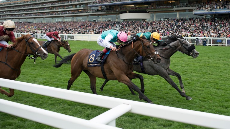 Coronet (Olivier Peslier,right) beats Mori and Hertford Dancer in the Ribblesdale StakesRoyal Ascot 22.6.17 Pic: Edward Whitaker