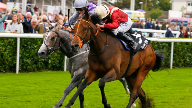 Heartache (Ryan Moore) gets the better of the grey Havana Grey in a thrilling Wainwrights Flying Childers at Doncaster on Friday