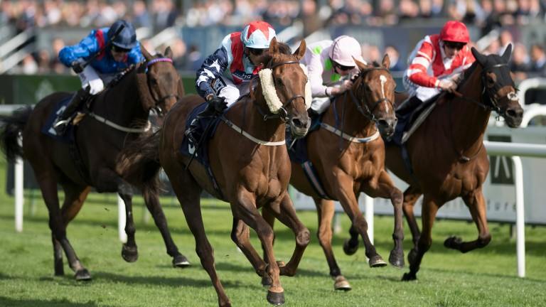 Desert Skyline (Silvestre de Sousa, second left) wins the Doncaster Cup from Thomas Hobson (second right) and Sheikhzayadroad (right) at Doncaster on Friday