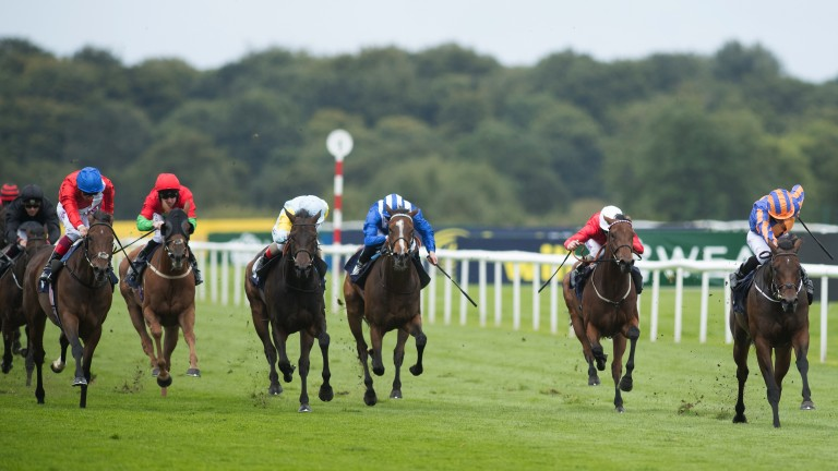 Terrific tune: Music Box (right) stays on well under Ryan Moore to land the Group 3 Sceptre Stakes