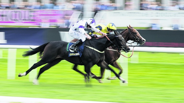 Time To Study and Byron Flyer fight out the finish of a Mallard Handicap worth just £40,000