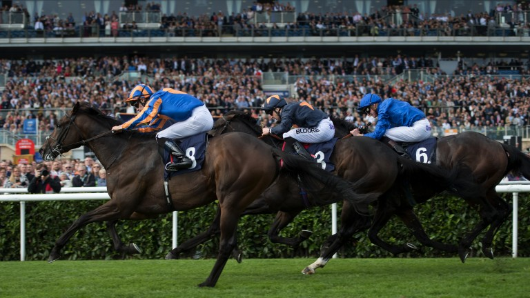 Storming home: Seahenge (left) comes with a late rattle to land the Champagne Stakes under Donnacha O'Brien