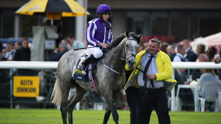 Classic kings: Ryan Moore aboard Capri following their win in Doncaster's most famous race
