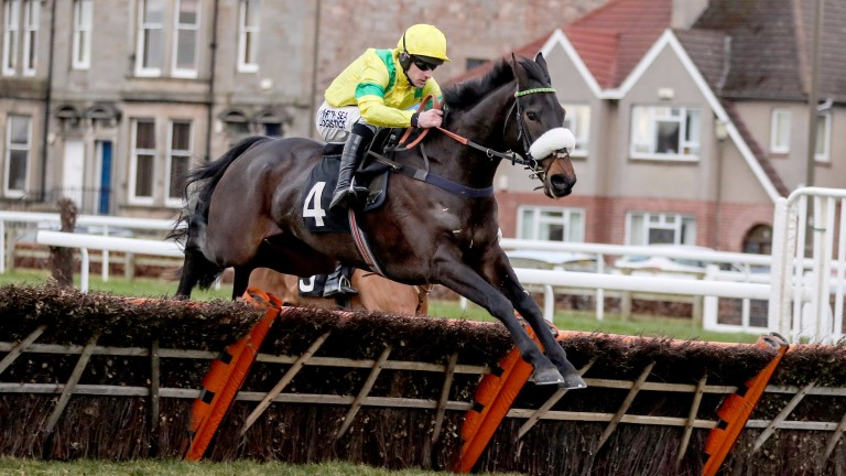Monbeg Charmer, pictured winning at Musselburgh last season, was among those who took part in a public schooling demonstration