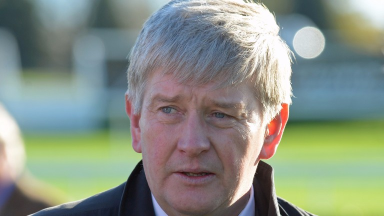 "John Quinn: ""presence of Pretty Pollyanna will make it a better horserace"""