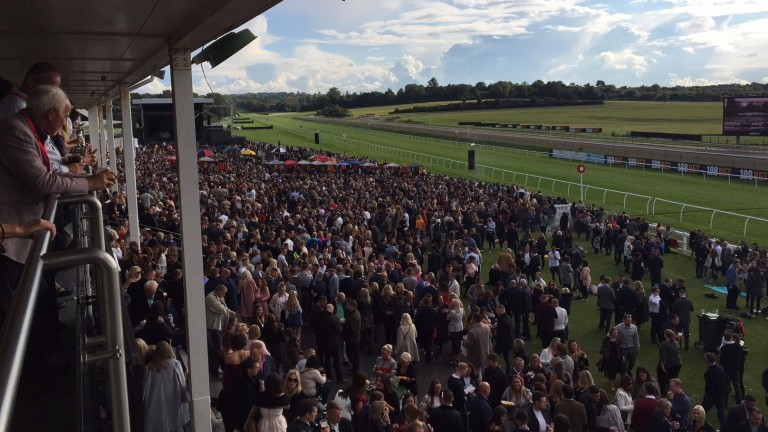 There was a sellout crowd of over 12,000 at Lingfield to see Craig David
