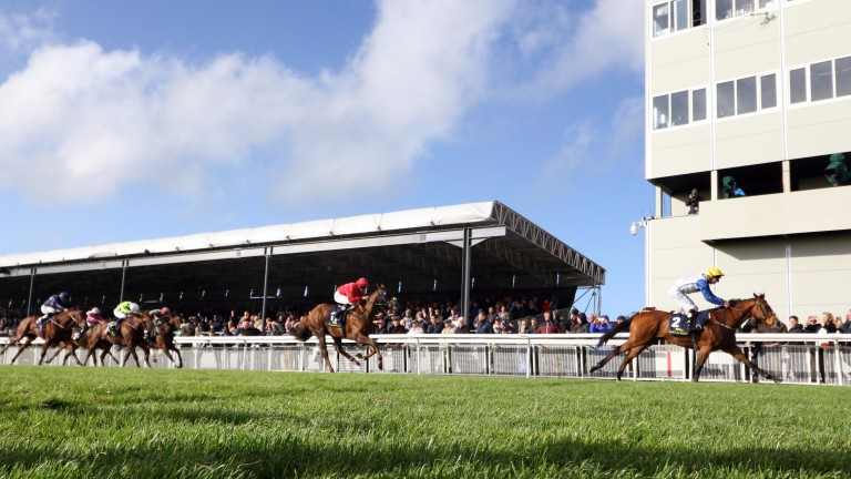 Curragh: hosted the second day of Irish Champions Weekend
