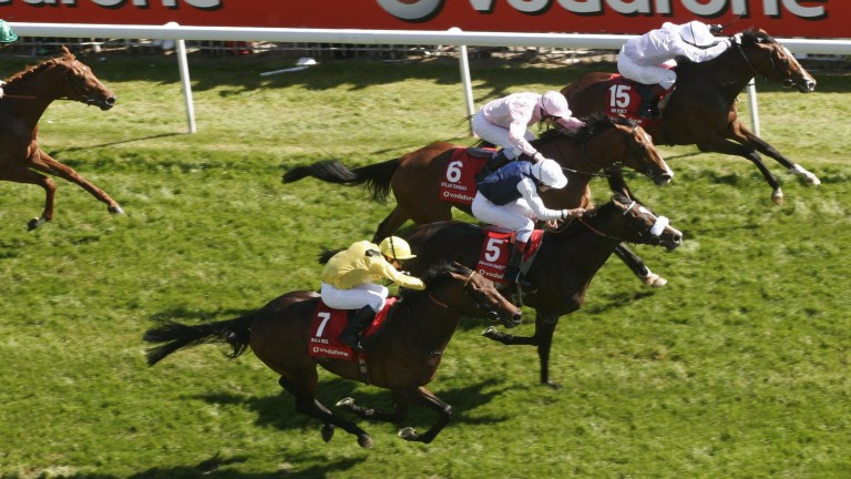 Dragon Dancer (5) goes down by a short-head to Sir Percy (15) in the 2006 Derby