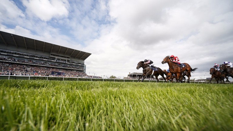 Aclaim (black and pink) finds plenty to land his second Group 2 in the Park Stakes