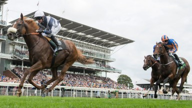 Ulysses and Jim Crowley power to victory at York