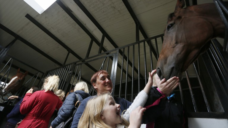 Centre of attention: Baraweez, trained by Brian Ellison, gets a pat from some excited observers