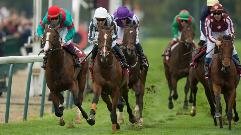 Noozhoh Canarias (left): Spanish star has his first winner on the board