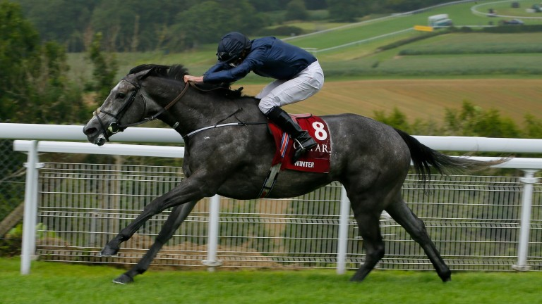 Winter: supported into a top-priced 9-1 for the Prix de l'Arc de Triomphe on Sunday